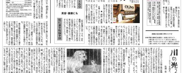 読売新聞【朝刊・全国版】の「家計」欄に記事が掲載されました。