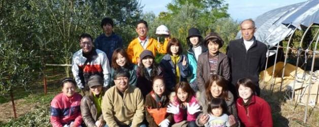 小豆島にてオリーブ収穫体験ツアーを実施しました!